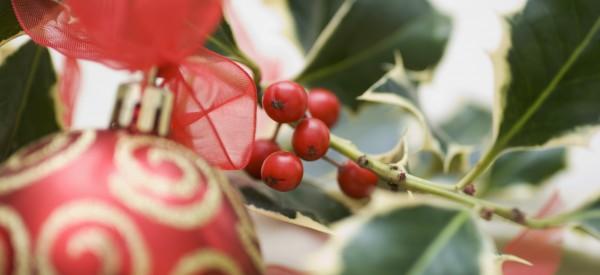 Vianočná otváracia doba