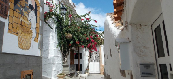 Gran Canaria – výhodný balíček na 2 alebo 4 týždne