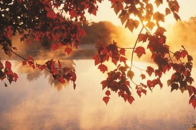 Spravte si na jeseň radosť…