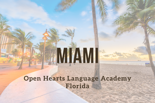 Kurz angličtiny – Miami – Four Ambassadors complex