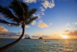 Kurz angličtiny – Hawaii – Honolulu